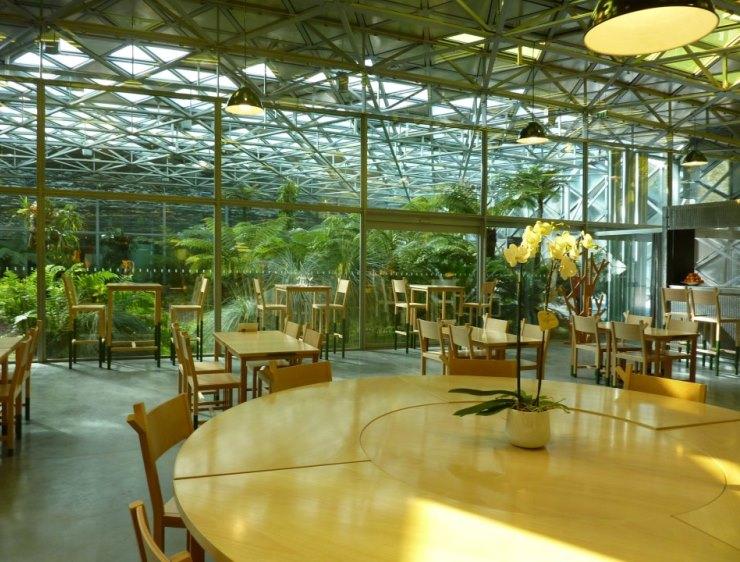 le platine  Les 5 meilleurs restaurants à Saint Étienne Les 5 meilleurs restaurants à Saint Étienne aa