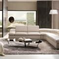 Couleur de votre salon - 1 Des conseils pour choisir la couleur de votre salon Des conseils pour choisir la couleur de votre salon Couleur de votre salon 1 120x120