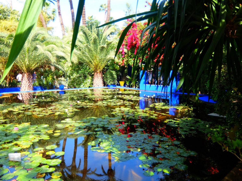 Les jardins Majorelle  Top 10 Des Jardins Mythiques A Découvrir ce Printemps Majorelle