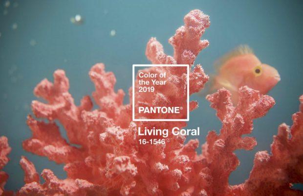 Pantone Annonce le Corail Vivant comme Couleur de l'Année 2019