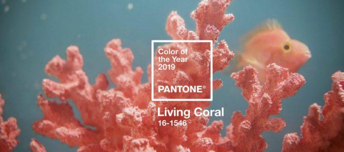 Pantone Annonce le Corail Vivant comme Couleur de l'Année 2019 pantone color of the year 2019 living coral 710x315
