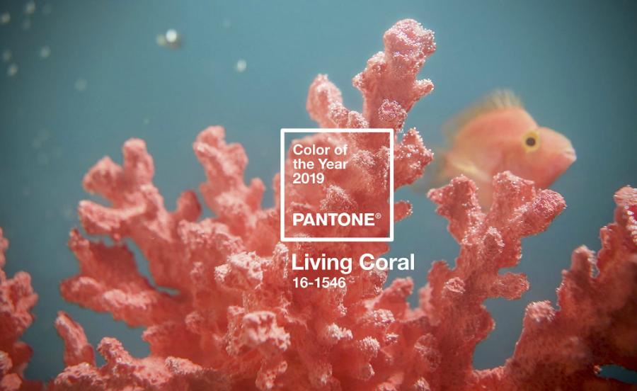 Pantone Annonce le Corail Vivant comme Couleur de l'Année 2019 pantone color of the year 2019 living coral